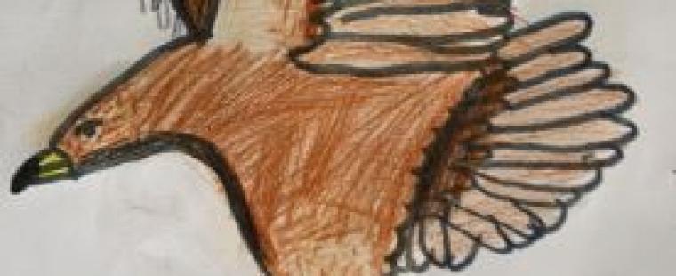 erica-orange