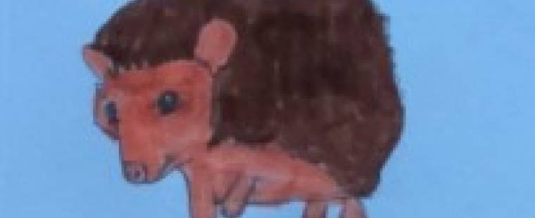 louie-brown_0