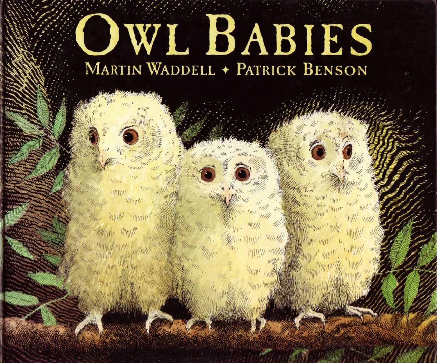 Image result for owl babies front cover